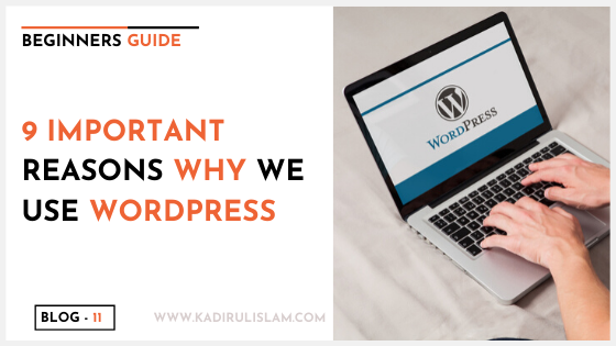 9 important reasons why we use wordpress for our future website